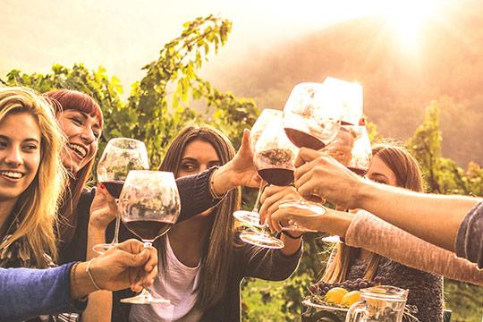 Grupo disfrutando de cata de vinos